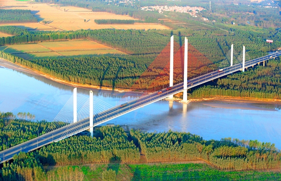黄河大桥侯贺良 摄影 (382)-1_副本.jpg
